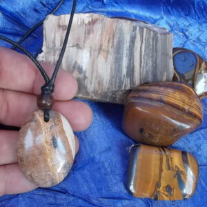Kalahari Picture stone with petrified wood and tiger eye stones