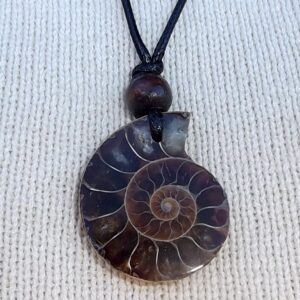 Ammonite pendants