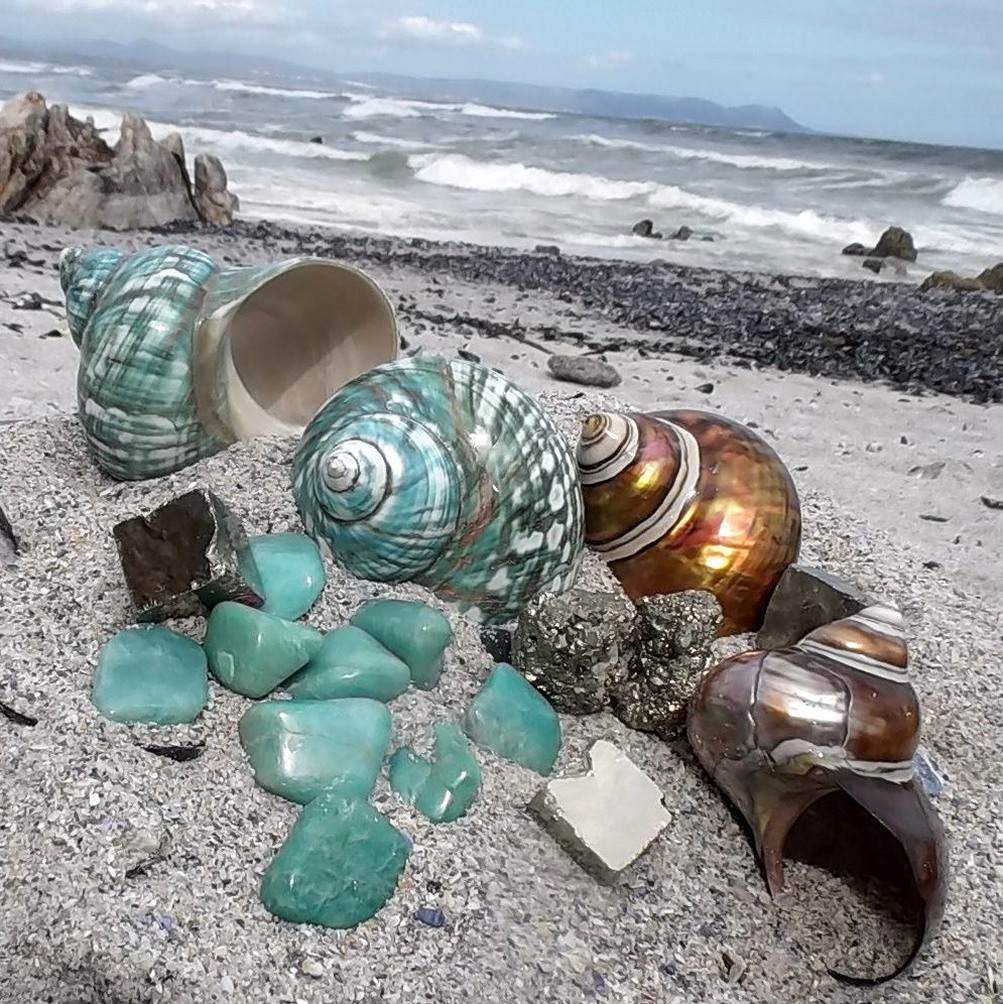 m_Madagascar shells with Amazonite and pyrite