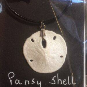 Shell pendants and shell earrings
